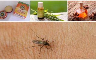 סקירה כללית של תרופות עממיות עבור יתושים ו midges בטבע
