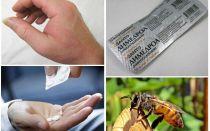 מה לעשות אם קצת דבורה