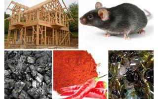 הגנה על הבית מסגרת נגד עכברים