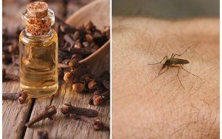 שמן ציפורן נגד יתושים