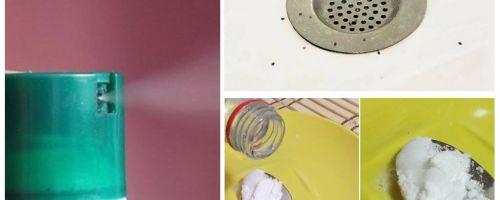 איך להיפטר midges בדירה