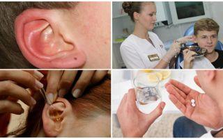 טיק באוזן של אדם: סימפטומים וטיפול