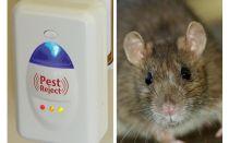 Pest Redzhet קולי מכרסמים מכרסמים וחרקים