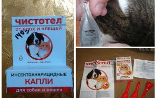 טיפות של קנדין מ פרעושים עבור חתולים וכלבים