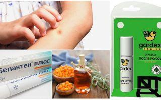 חנות תרופות עממיות עבור עקיצות יתושים ו blackflies