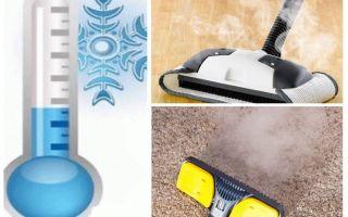 איך להיפטר השטיחים פרעושים השטיח ואמצעים מאולתרים