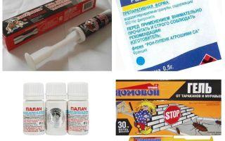 אמצעי פיפרוניל מקקים