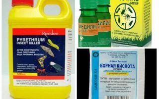 תרופות מקצועיות עבור ג'וקים