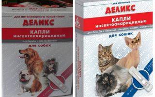 טיפות פשפשים טריות עבור חתולים וכלבים