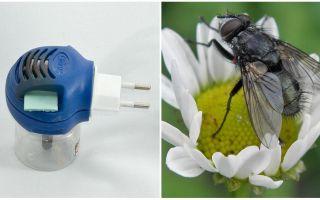 פומיגטורים מזבובים ויתושים בשקע