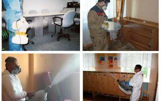 טיפול ערפל חם עבור פשפשים