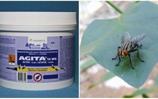השימוש של Agita מ זבובים