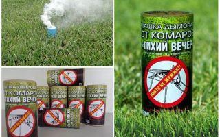 מדמדי העשן הטובים ביותר עבור יתושים