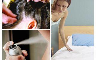 תזכיר על pediculosis עבור ההורים