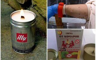 נרות נגד יתושים